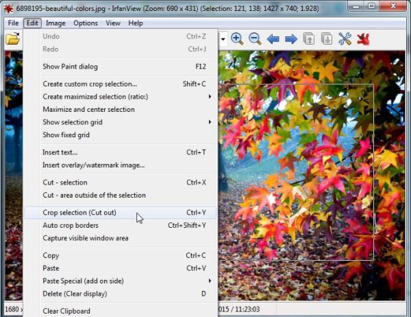 تحميل برنامج عرض وتعديل الصور irfanview