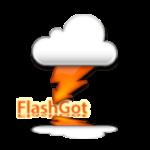 اضافة فلاش جوت لفايرفوكس ، تحميل الفيديو ، برنامج فلاش جوت ، Download Flashgot
